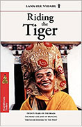 book_riding_the_tiger