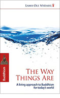 book_the_way_things_are